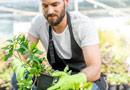 Barkhoff, Max Garten- und Landschaftsbau Essen