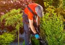 Knaupp.Jr Gartenbau Landschaftspflege und Baggerbetrieb Esslingen