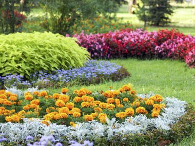 Blumenbeet in einer Parkanlage