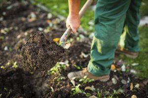Gartenarbeit vom GaLaBauer