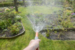 Gartenkalender Juli: Garten gießen