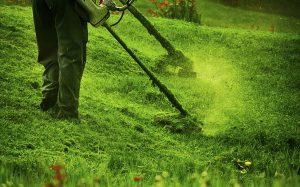 Rasentrimmen vom Gartenbauprofi