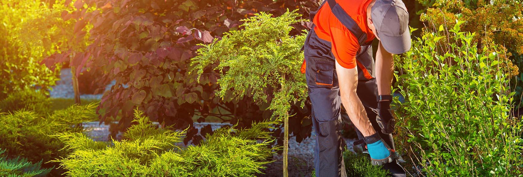 gartenbau preise – jetzt preisvergleich starten » 11880-gartenbau, Garten ideen
