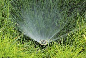 Professionelle Gartenbewässerung