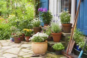 Terrasse mit Blumen und Blumentopf